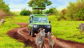 Так ли хорош отдых в Танзании