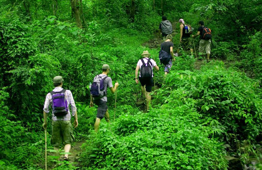 Что такое экологический туризм и почему он так популярен?