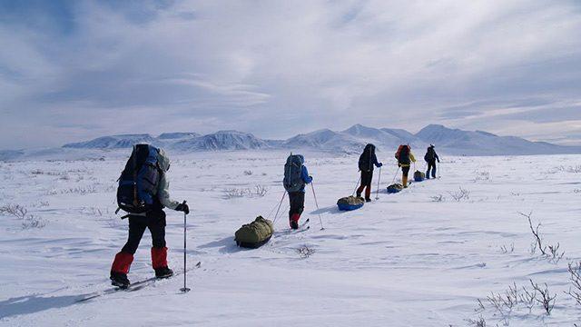 Покорение бескрайней Арктики