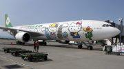 5 самых необычных окрасок самолетов
