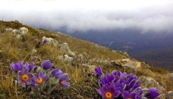 5 лучших отечественных направлений для весеннего отпуска