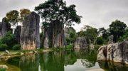 Где в Китае находится Каменный лес и чем он интересен путешественникам