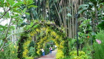 10 самых красивых мест Сингапура, которые стоит посетить хотя бы раз в жизни