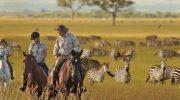 Почему авторские туры в Африку пользуются повышенным спросом