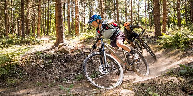 Виды горных велосипедов