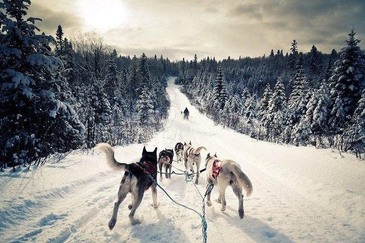Особенности отдыха зимой в Карелии